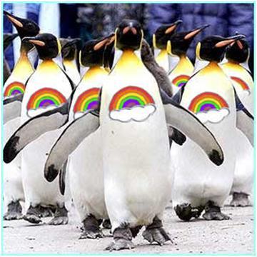 Gay-penguins-1